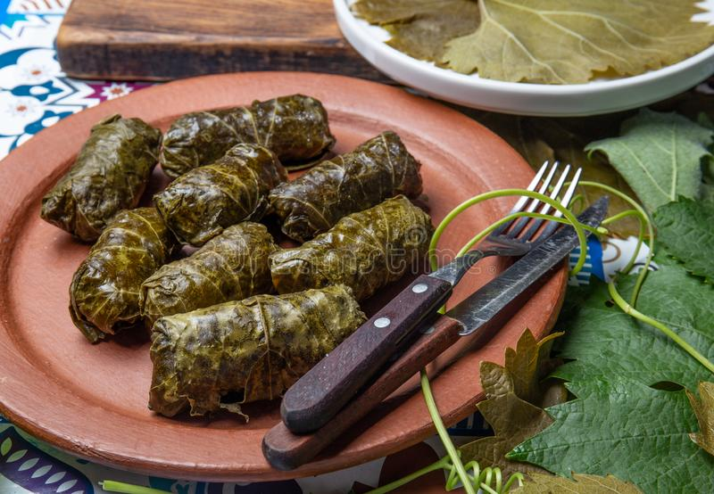 Latin American Mexican Chilean cuisine. Ninos envueltos. Grape leaves stuffed wish meat on clay plate. Latin American Mexican Chilean cuisine. Ninos envueltos stock image
