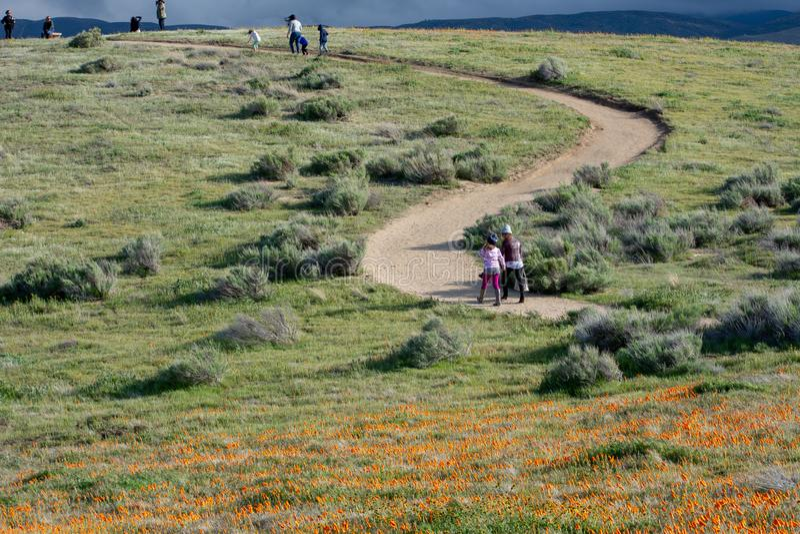 Latina córki i matki odprowadzenie w pustynnym Kalifornia maczka polu na ścieżce zdjęcia stock