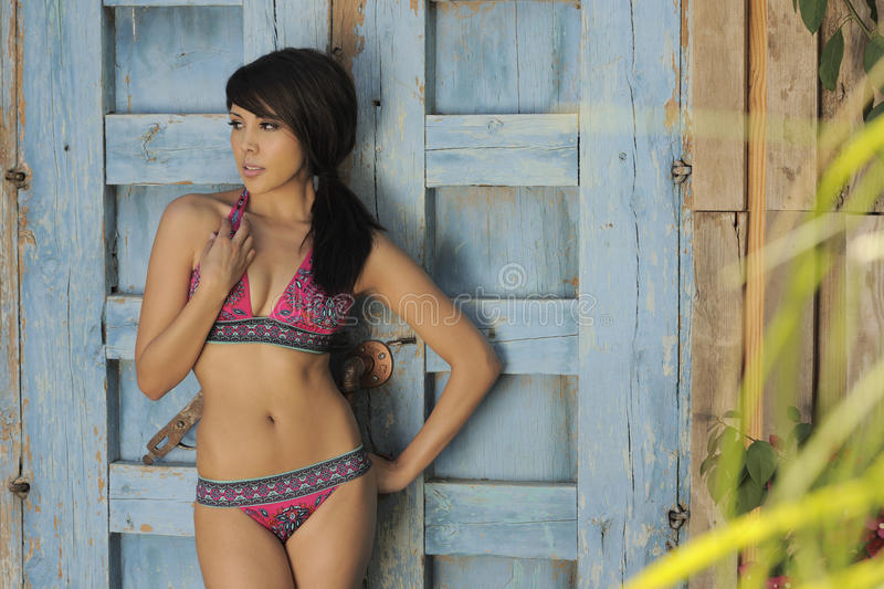 Download Latina Model Garden Wall stock image. Image of abdomen - 14236685