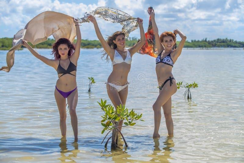 Latinamerikanmodeller på stranden royaltyfri fotografi