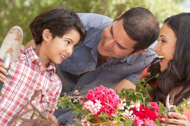 Latinamerikansk familj som arbetar i trädgården som Tidying krukor arkivbilder