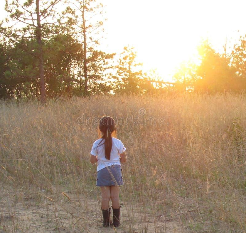 Latinamerikansk Girl- som tycker om solnedgången royaltyfri foto