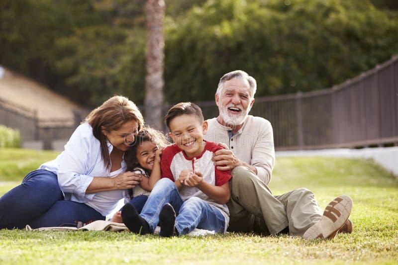 Latinamerikanska morföräldrar som sitter på gräset i, parkerar med deras barnbarn som skrattar, låg vinkel royaltyfri fotografi