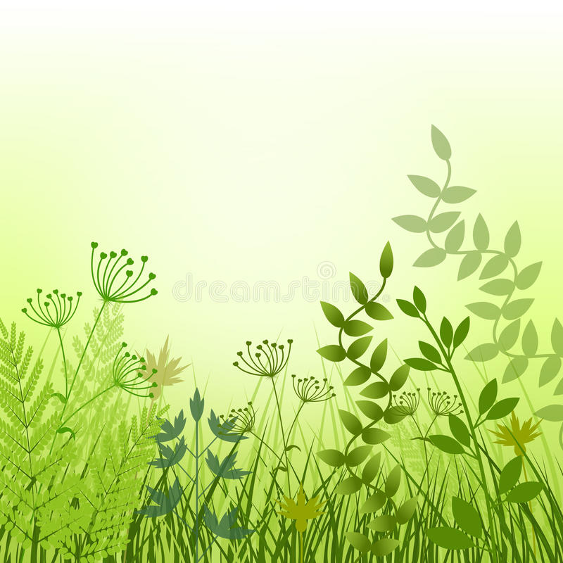Lato łąki tło obrazy stock