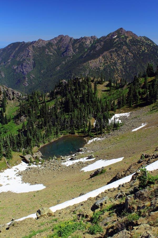 Lato śnieg Tarn pod Huragan granią i Meltwater, Olimpijski park narodowy, Waszyngton zdjęcie royalty free