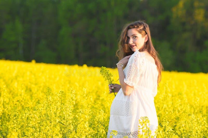 Lato brzemienność w ciepłym sezonie, Piękny portret kobieta w ciąży na ciepłym letnim dniu w naturze Brzemienno?? i zdjęcia royalty free