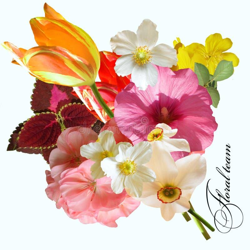 Lato bukieta tulipanowy anemonowy daffodil zdjęcia stock