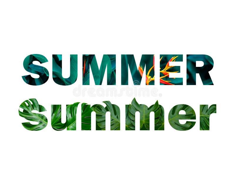Lato charaktery, liście w odizolowywającego festiwalu, biały tło zdjęcie royalty free