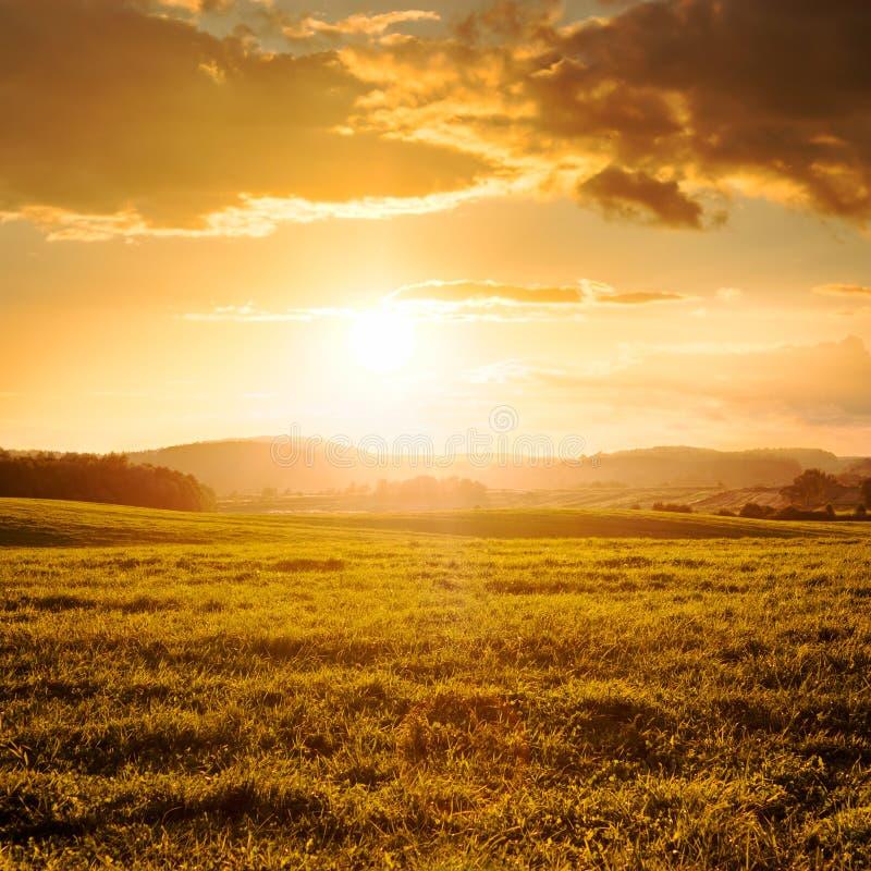 Lato chmury w Złotym świetle zmierzch i pole obrazy royalty free