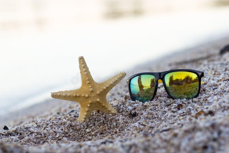 Lato czasu pojęcie z rozgwiazdą i szkłami na seashore był zdjęcie royalty free