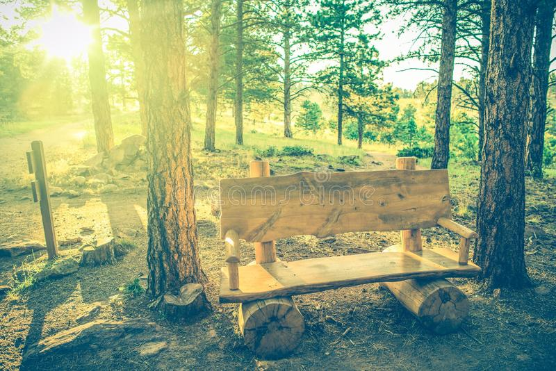 Lato Drewniana ławka zdjęcie royalty free