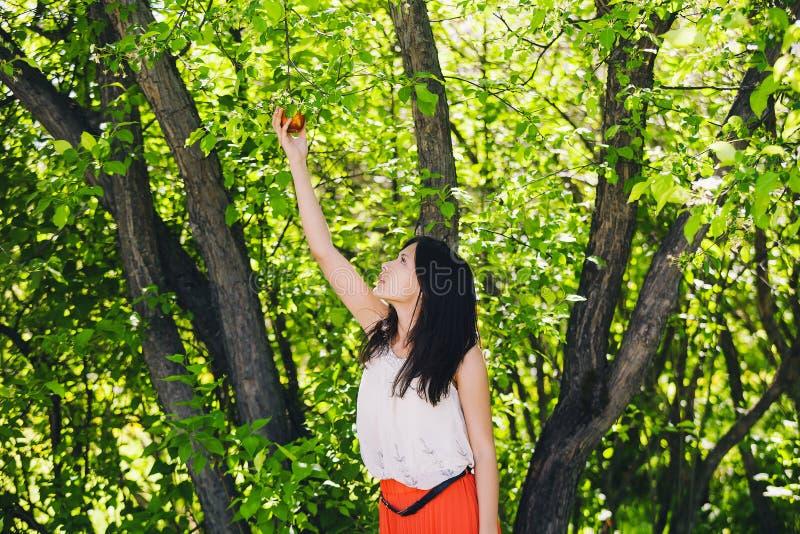 Lato dziewczyna na naturze z świeżym jabłkiem w rękach fotografia stock