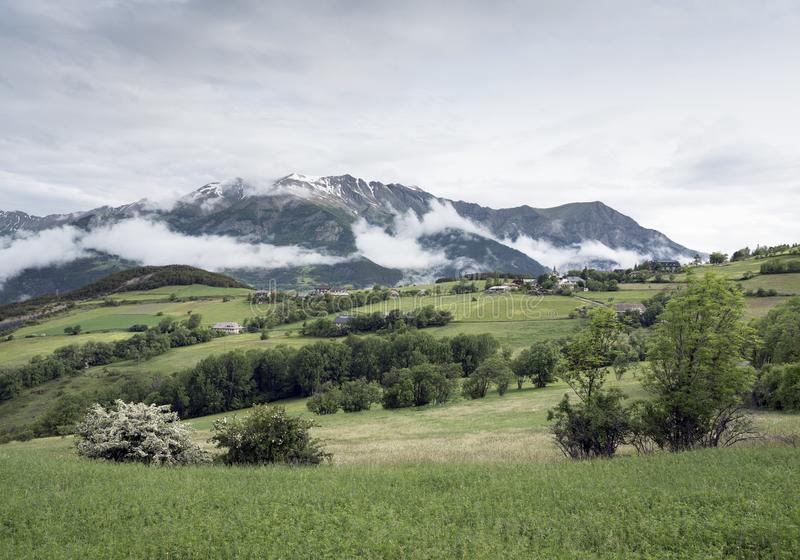Lato góry i kwiaty zbliżają barcelonnette w haute Provence zdjęcia royalty free