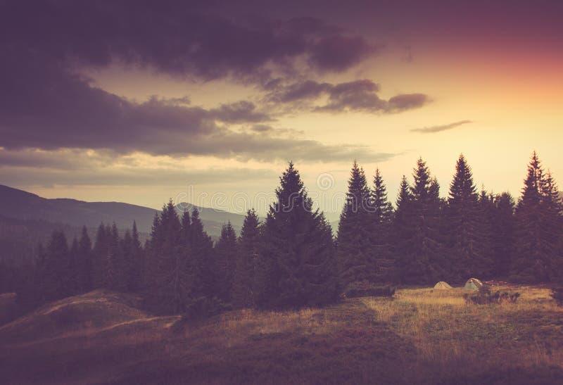 Lato góry krajobraz Turystyczni namioty zbliżają las zdjęcia royalty free