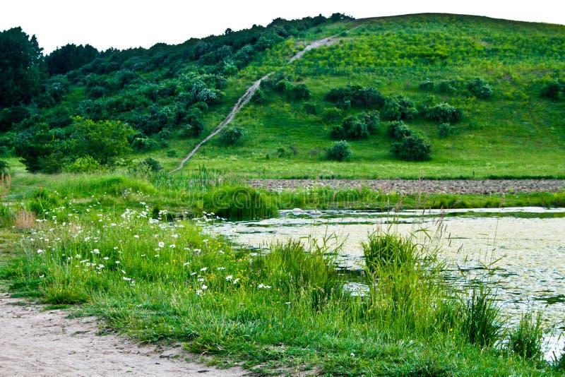 Lato i wiosna w zielonym krajobrazie obraz royalty free