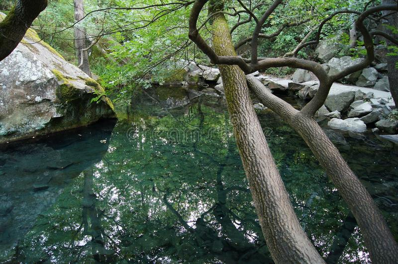 Lato jezioro w Ukraina obraz royalty free