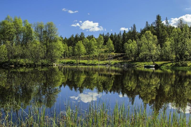 Download LATO krajobraz obraz stock. Obraz złożonej z greenbacks - 57663511