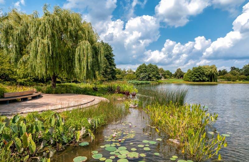 Lato krajobraz Chicagowski ogród botaniczny, Glencoe, usa zdjęcie stock