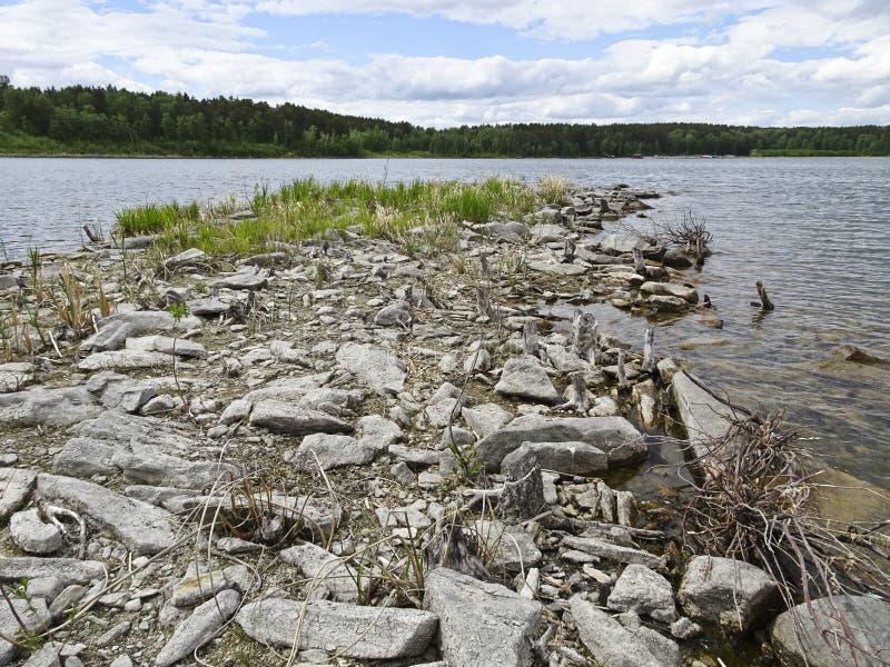Lato krajobraz: kamienisty brzeg lasowy jezioro w chmurnej pogodzie zdjęcie stock