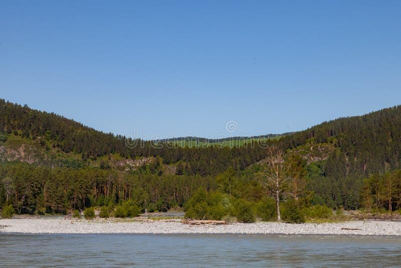 Lato krajobraz na rzece z kamieniami i dwa górami zakrywającymi z zielonymi iglastymi drzewami Podr?? obraz stock