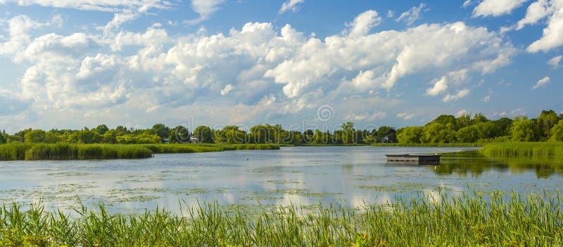 Lato krajobraz park na brzeg staw fotografia stock