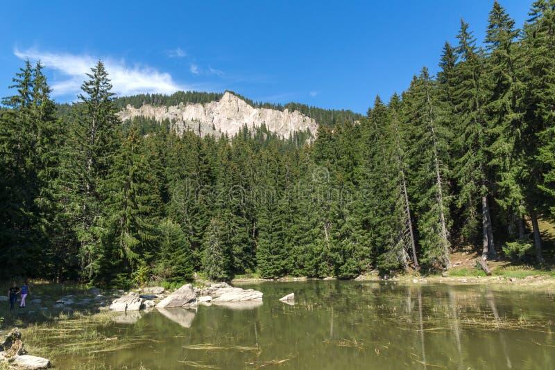 Lato krajobraz Saladzha Smolyan jezioro przy Rhodope górami, Smolyan region, Bułgaria zdjęcie royalty free