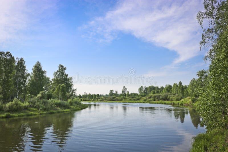 Lato krajobraz - spokojna płaska rzeka płynie wśród lasów fotografia royalty free