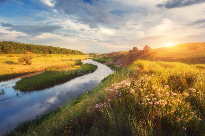 Lato krajobraz w pięknym stepie przy zmierzchem obraz stock