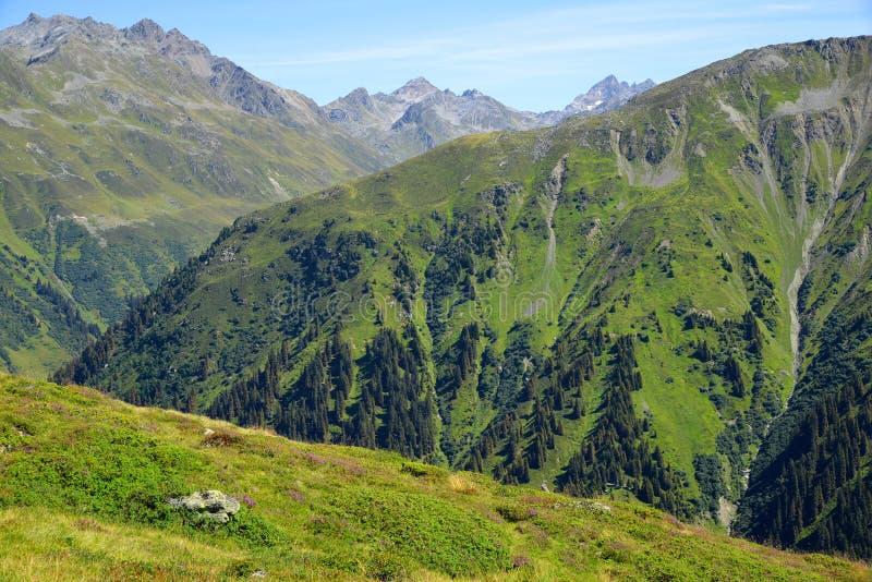 Download Lato Krajobraz W Szwajcaria Alps Zdjęcie Stock - Obraz złożonej z wierzchołek, poddaństwo: 65226572