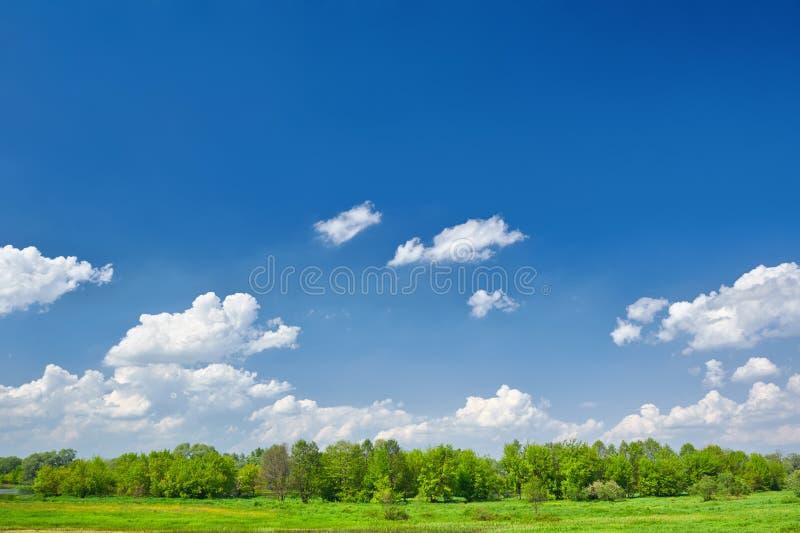Lato krajobraz z chmurami na niebieskim niebie. zdjęcia stock