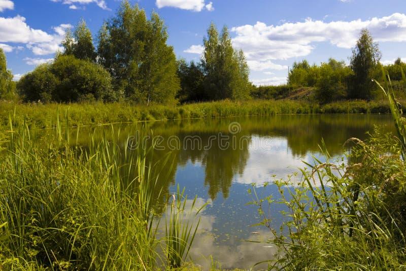 Lato krajobraz z stawem obraz stock