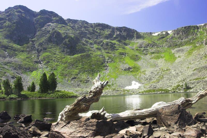 lato krajobrazu. obraz stock