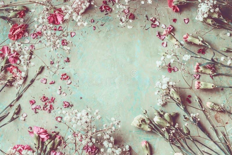 Lato kwiatów ramowy skład robić z różnorodnym kolorowym pastelu ogródem kwitnie, płatki i liście na desktop tle obrazy royalty free