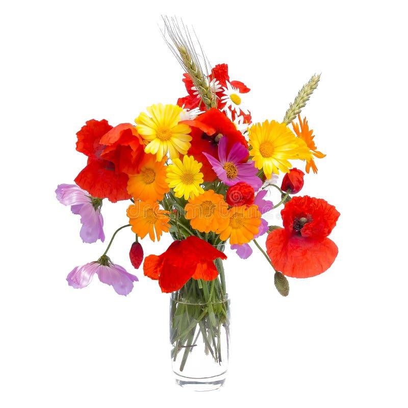 Lato kwiatu bukiet, biały tło zdjęcia stock
