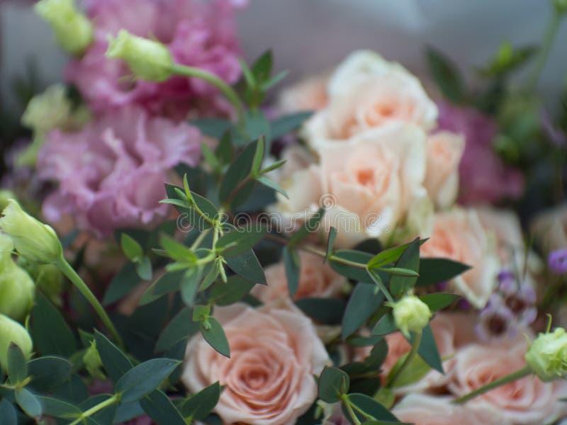 Lato kwitnie delikatne róże na kwitnieniu kwitnie świątecznego tło, pastel i miękka część bukieta kwiecistą kartę, blured selekcy zdjęcia stock