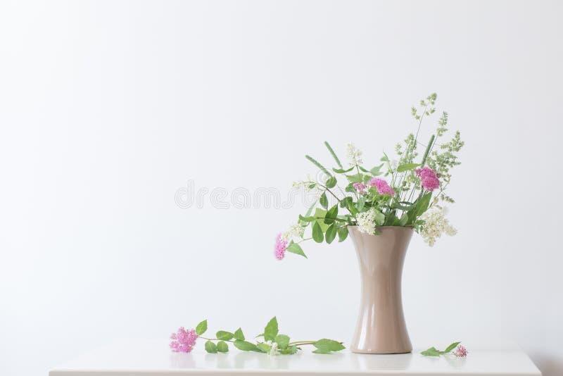 Lato kwitnie w wazie na stole obrazy royalty free