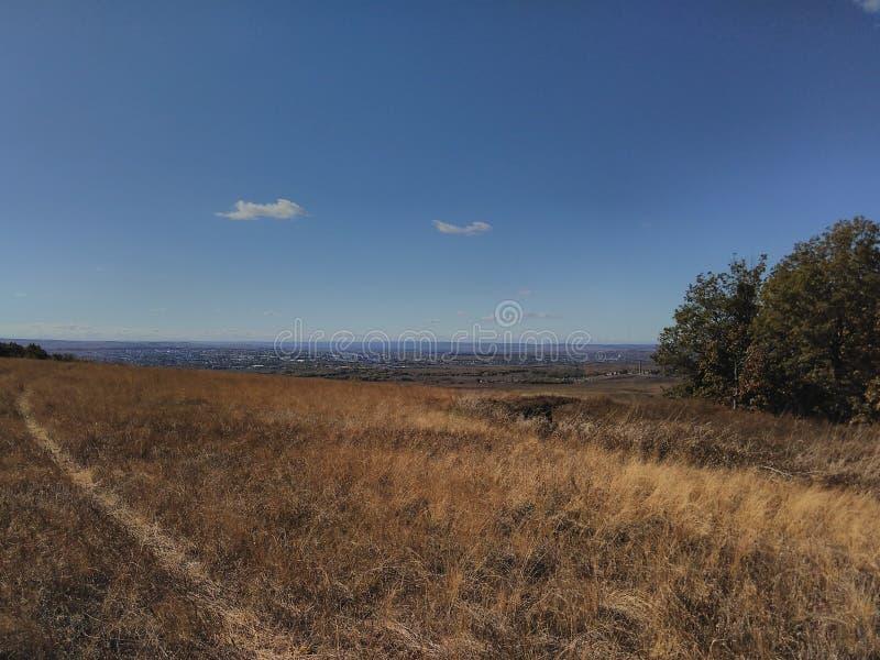 Lato lasu krajobraz na górze zdjęcie stock