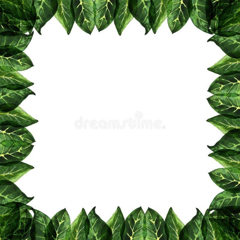 Lato liści wzór zdjęcie stock