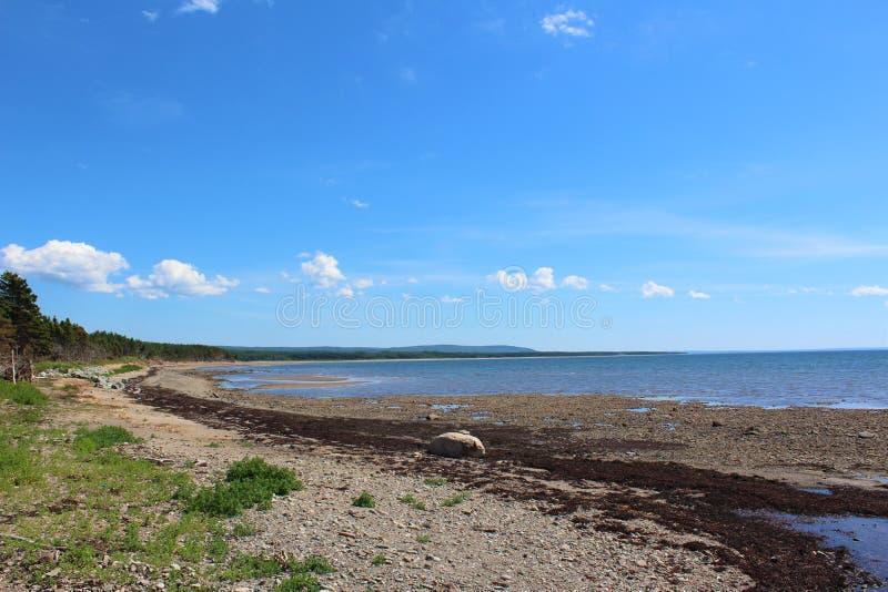 Lato nabrzeżna scena od nowa Scotia 1 zdjęcia stock