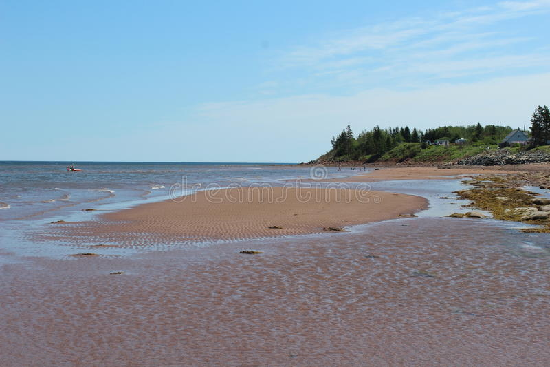 Lato nabrzeżna scena od nowa Scotia z sandbar obrazy royalty free