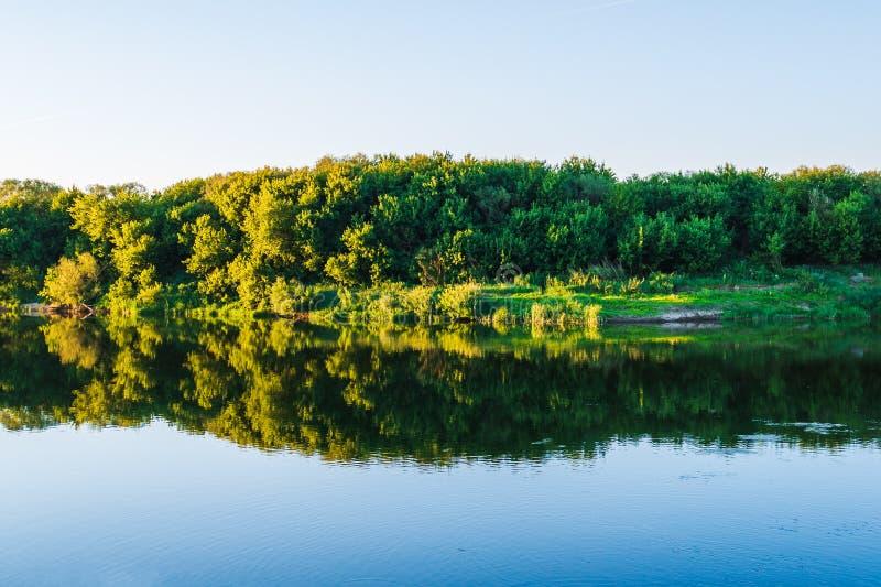 Lato natury panorama, lasowi drzewa, rzeka z odbiciem w wodzie i abstrakcjonistyczny żywy spokojny, i relaksujemy tło obrazy stock