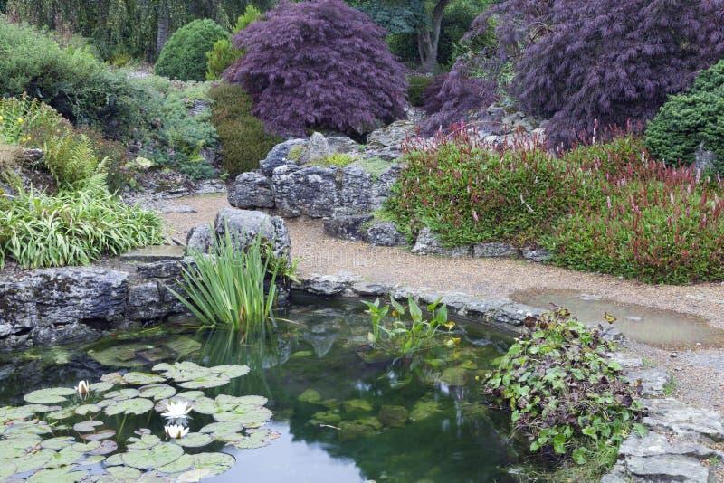Lato ogród z stawem, wodne leluje, kwiaty, drzewa obrazy stock