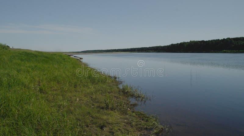 Lato Północny krajobraz, Pinega rzeka, Arkhangelsk region zdjęcie stock