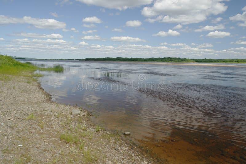 Lato Północny krajobraz, Pinega rzeka, Arkhangelsk region fotografia royalty free