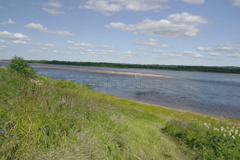 Lato Północny krajobraz, Pinega rzeka, Arkhangelsk region obraz royalty free
