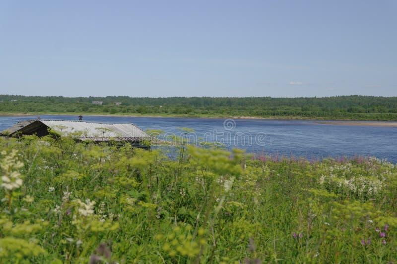 Lato Północny krajobraz, Pinega rzeka, Arkhangelsk region obrazy royalty free