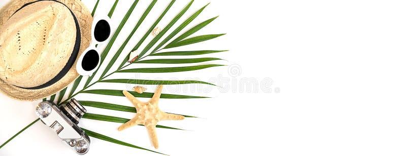 Lato podróżnika akcesoriów retro kamera, słomiany kapelusz, okulary przeciwsłoneczni, seashells, rozgwiazda i tropikalny palmowy  obraz royalty free