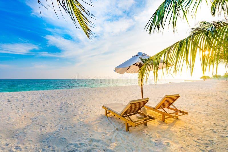 Lato podróży miejsca przeznaczenia tło Lato plażowa scena, słońc łóżek słońca parasol i drzewka palmowe, zdjęcia royalty free