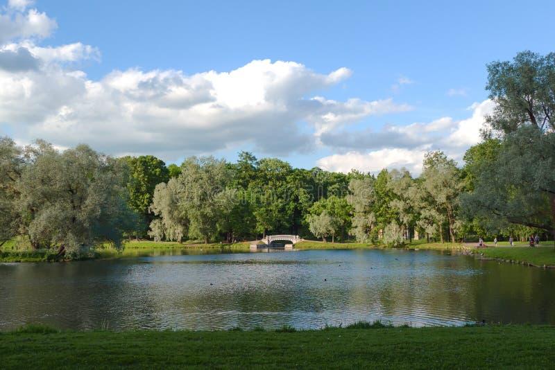 Lato pogodny krajobraz na stawie w parku obrazy royalty free