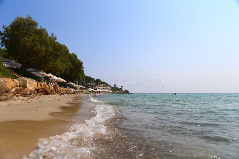 Download Lato Ranku Sani Piaskowata Plaża Z Sunbeds Chalkidiki I Sunshades, Grecja Obraz Editorial - Obraz złożonej z odpoczynek, natura: 106918115